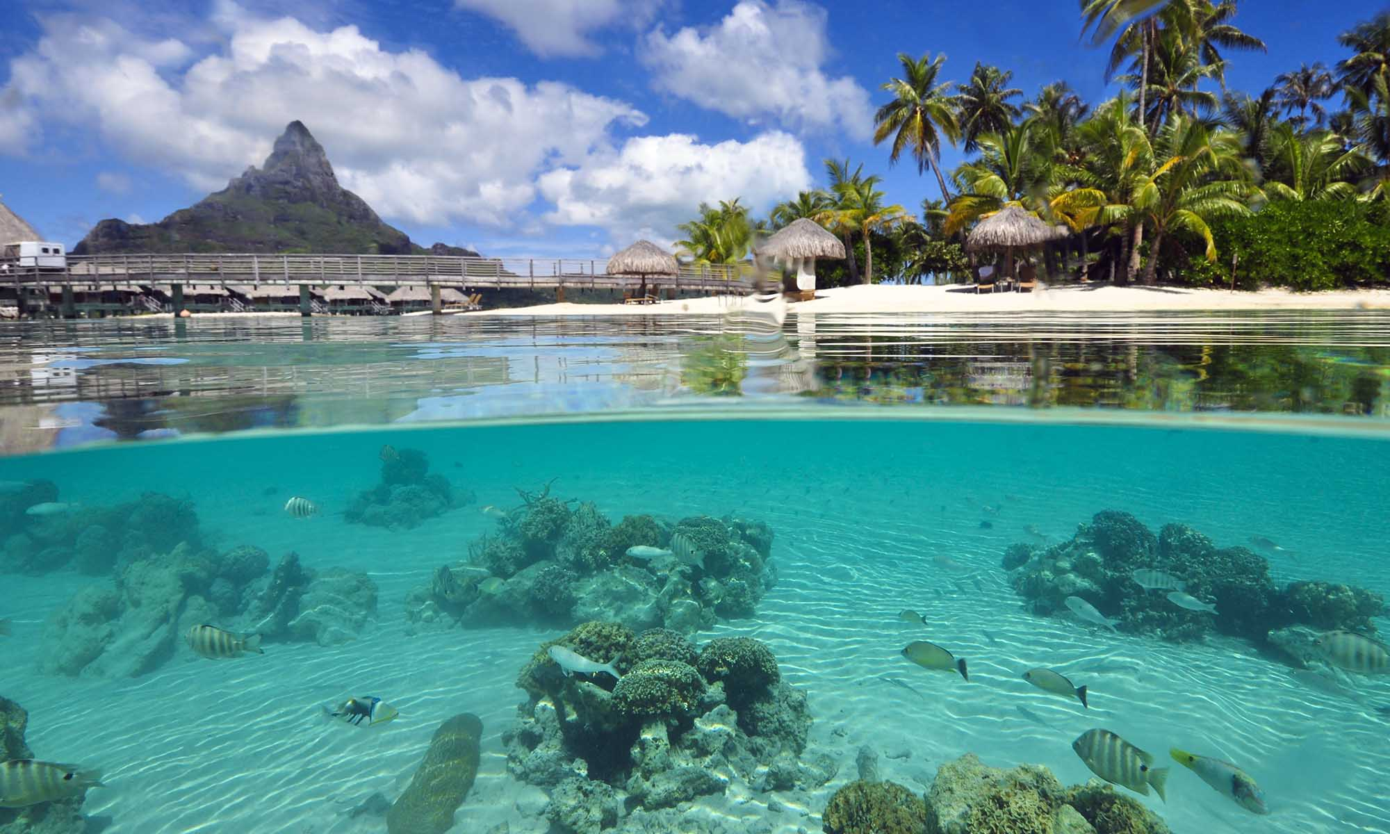 InterContinental Bora Bora Resort & Thalasso Spa, Lagoonarium