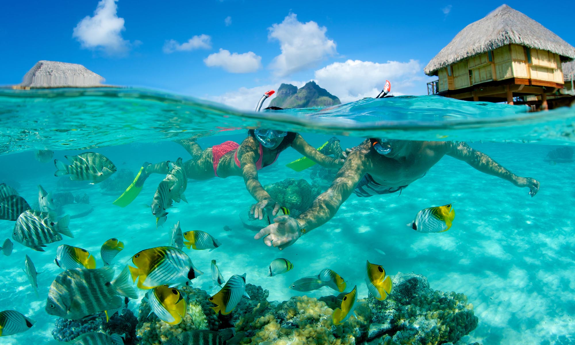 Bora Bora Pearl Beach Resort & Spa, Snorkeling