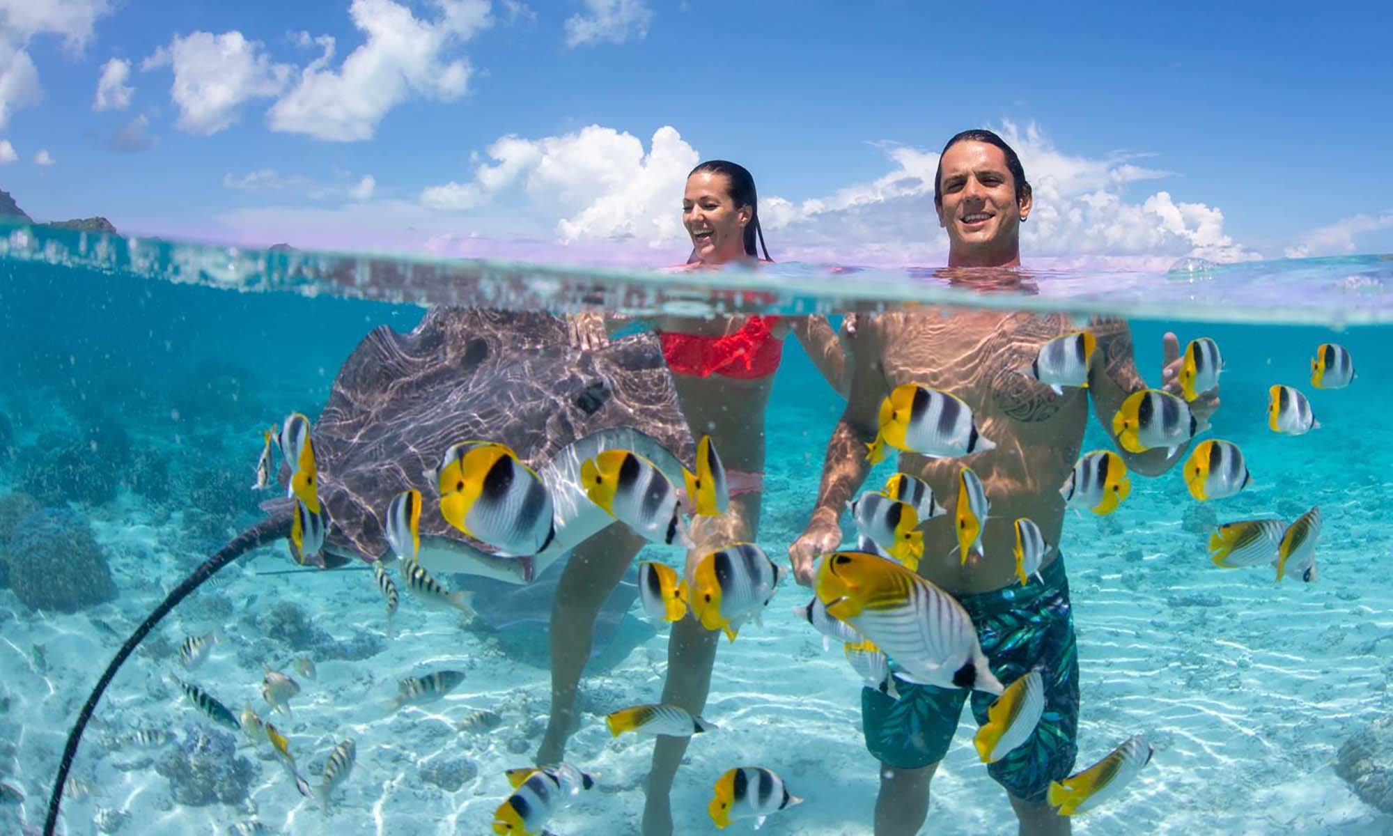 Bora Bora Shark & Ray Snorkel Safari