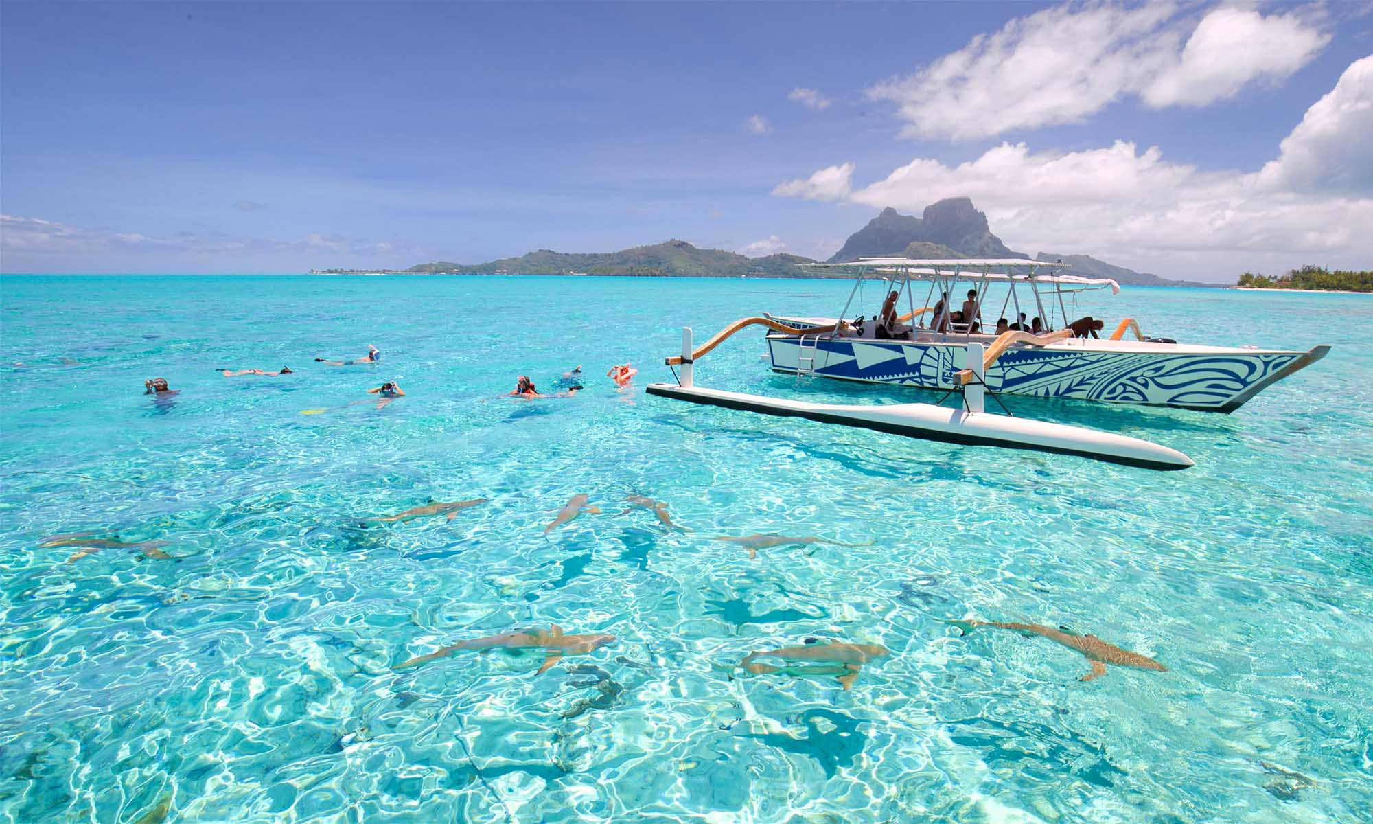 Bora Bora Shark & Ray Lagoon Cruise with Motu Lunch