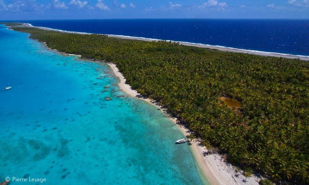 Fakarava Atoll Travel Guide Diving And Vacations