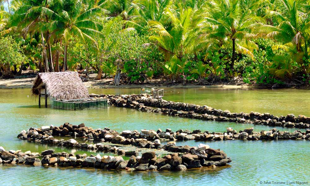 Huahine's ancient fish traps