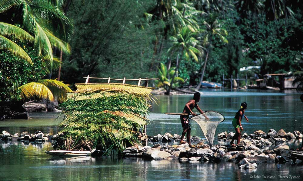 Locals using Huahine's ancient fish traps