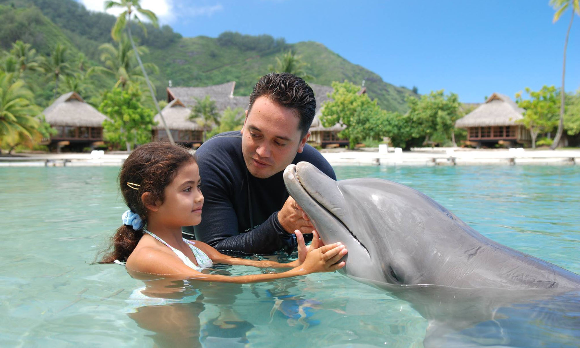 InterContinental Moorea Resort and Spa, Family Experience with the Dolphins