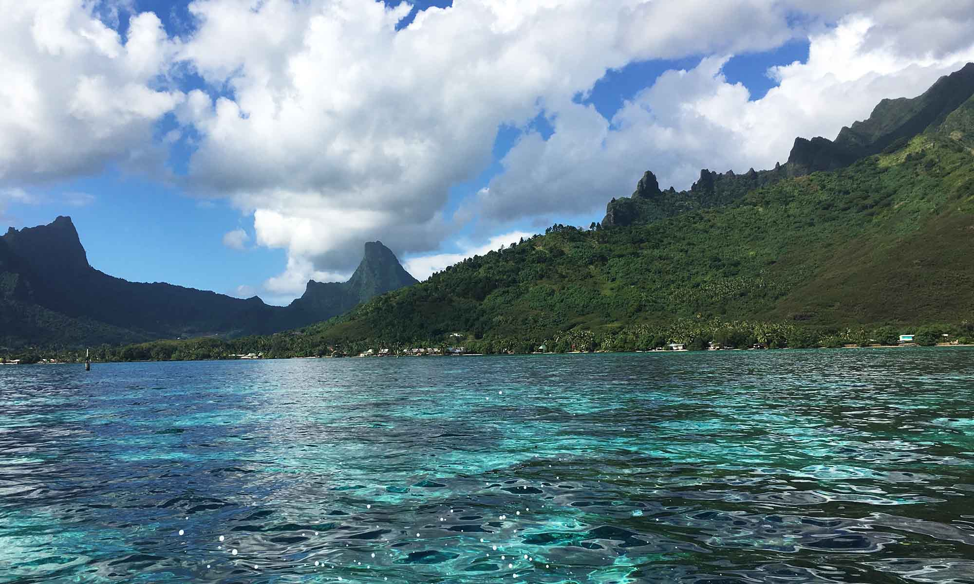 Lagoon Views of Moorea