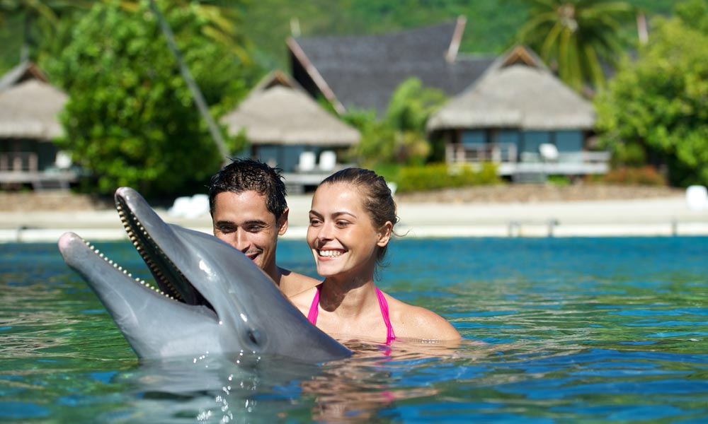Moorea Dolphin Center at The InterContinental Moorea Resort and Spa