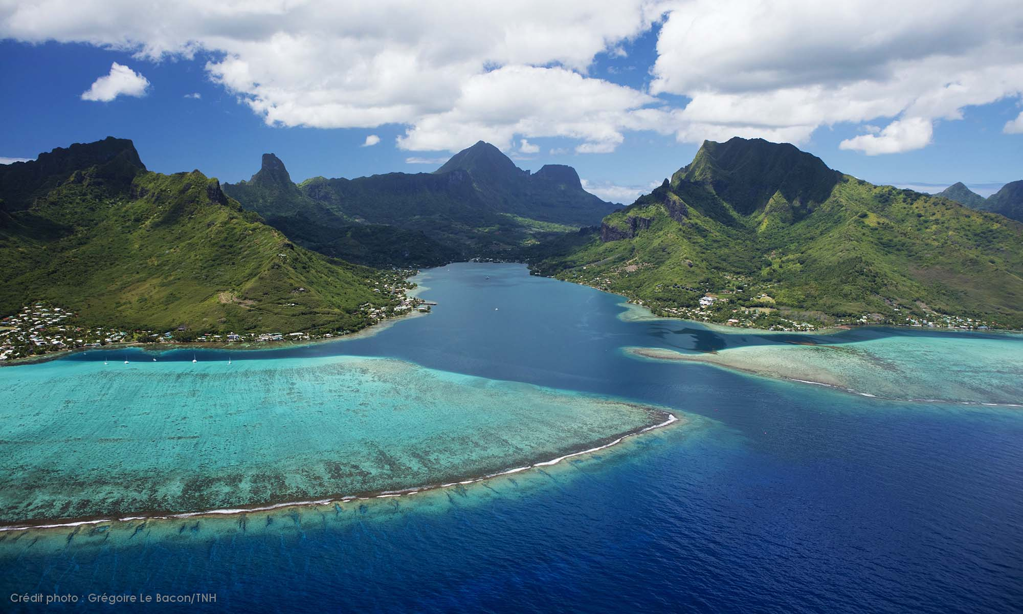 Image result for Moorea