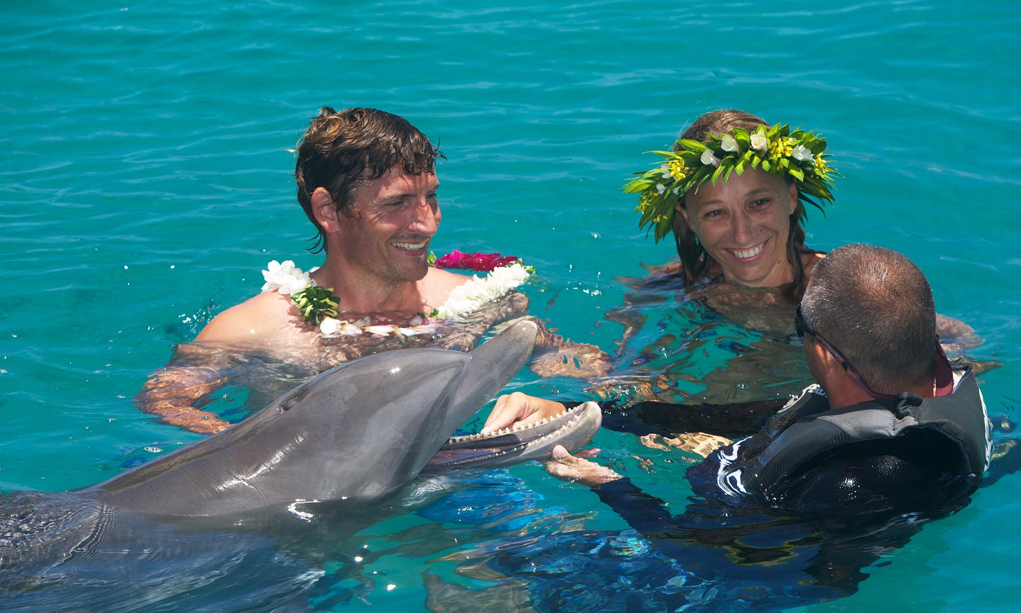 Moorea Dolphin Center, 'Moana' Swimming with Dolphins Experience