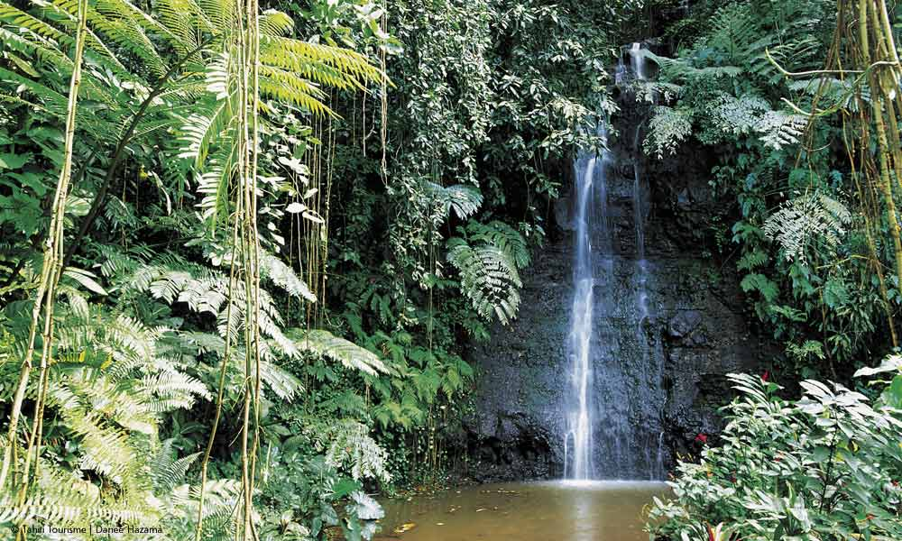 Tahiti Hiking Tour, Interior Waterfall