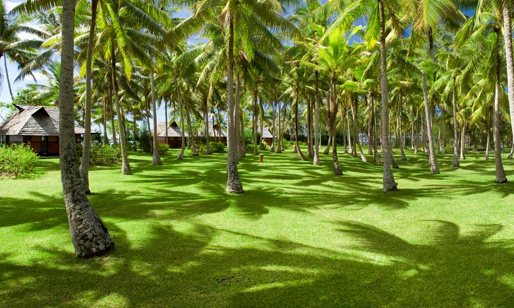 Vahine Island Private Resort, Gardens