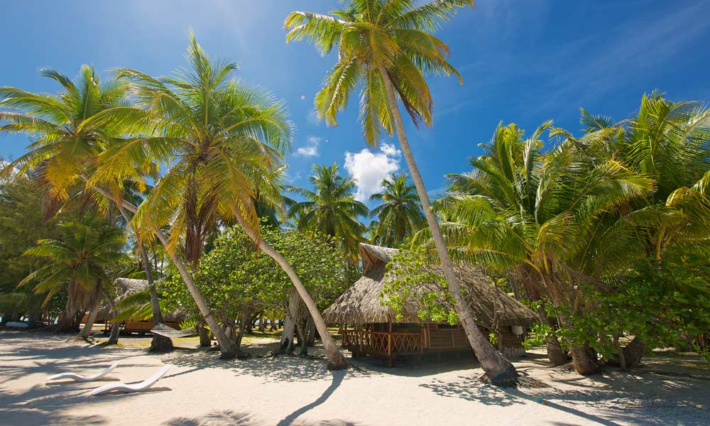 Le Sauvage Private Island, Beach Bungalow