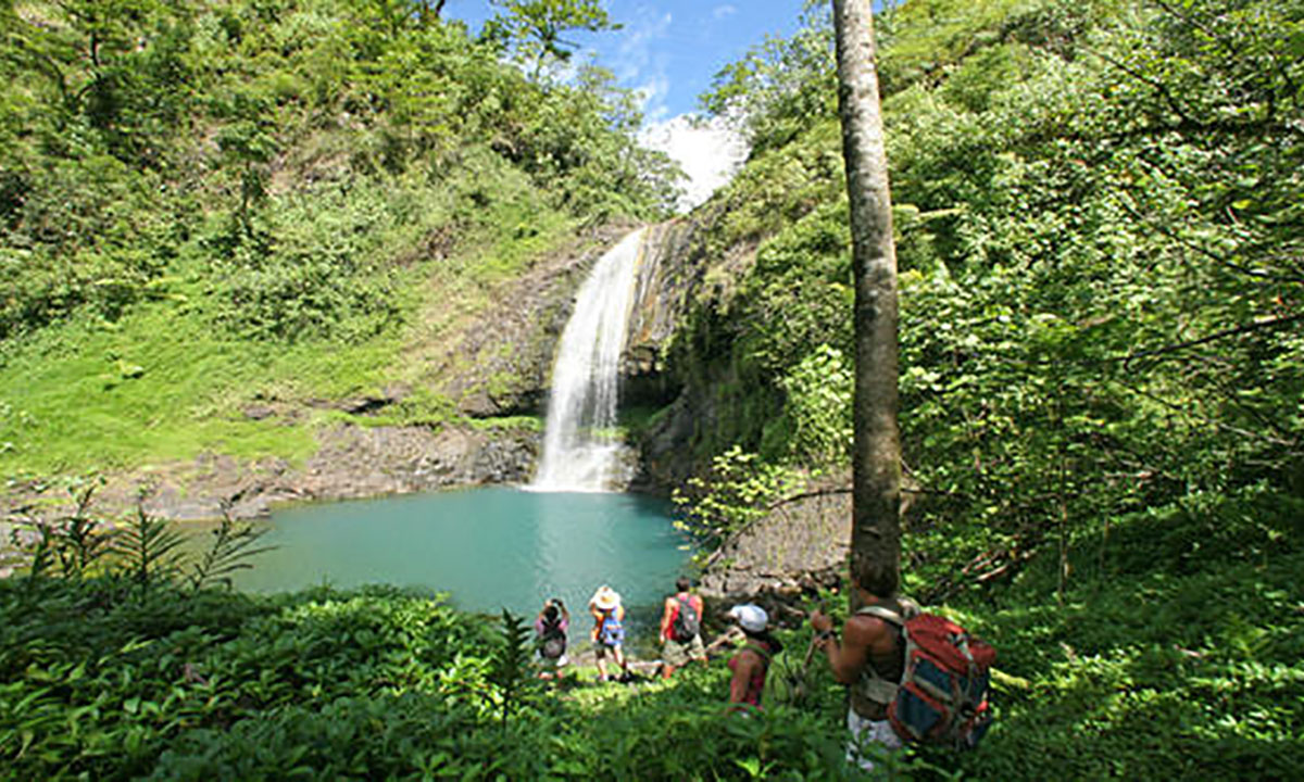 Raiatea Waterfall Hike