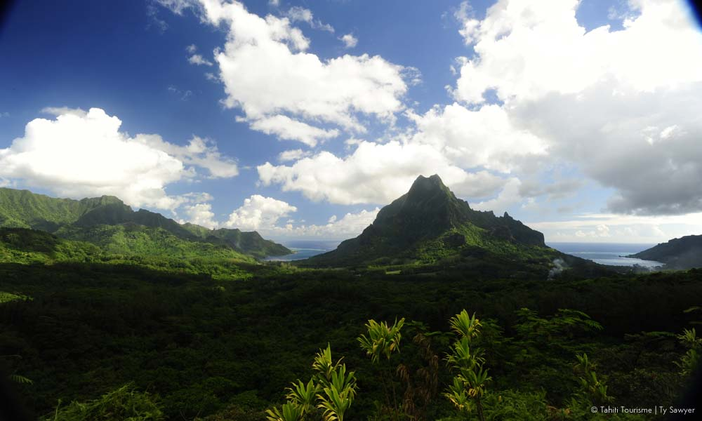 Moorea Day Tour