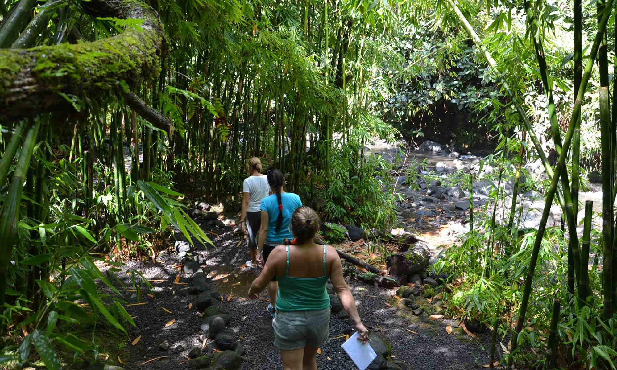 Hiking on Tahiti