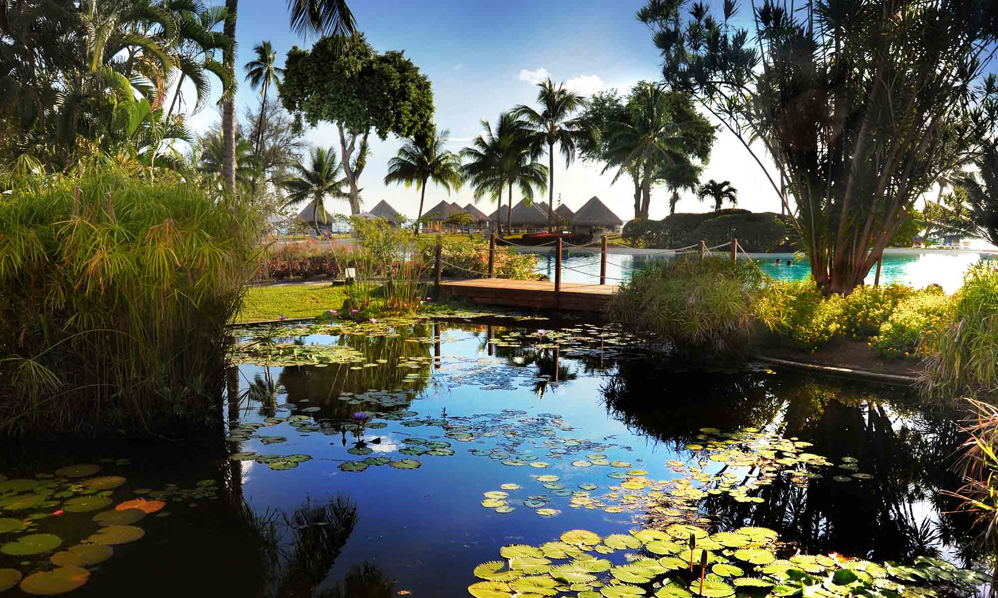 Tahiti Resort Landscapes