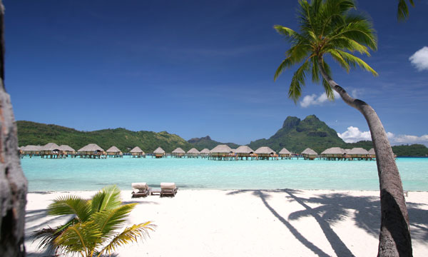 Bora Bora Pearl Honeymoon