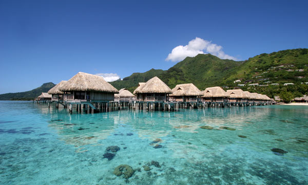 Moorea Magnifique Honeymoon