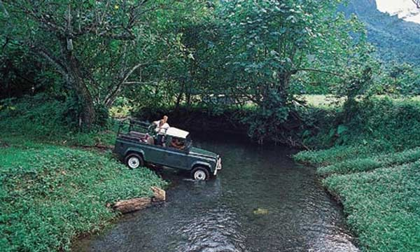 4x4 Jeep Safari