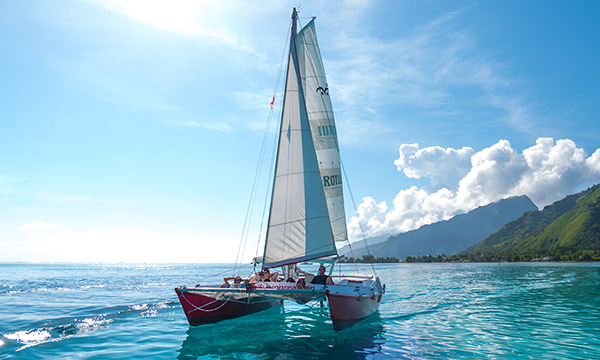 Half-Day Moorea Catamaran Cruise